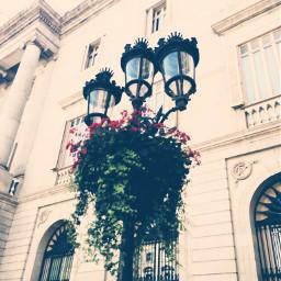 barcelonastreets lights hangingflowers warm sunnyday