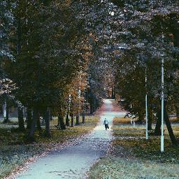 autumn siauliai