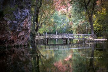 colorful autumn monasteriodepiedra spain