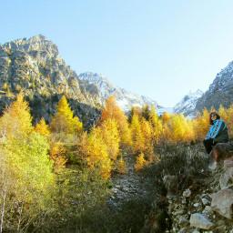 nature photography autumn peaks woods
