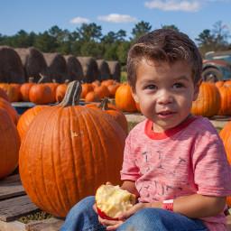 cute pumpkinpatch fun happy familyfun