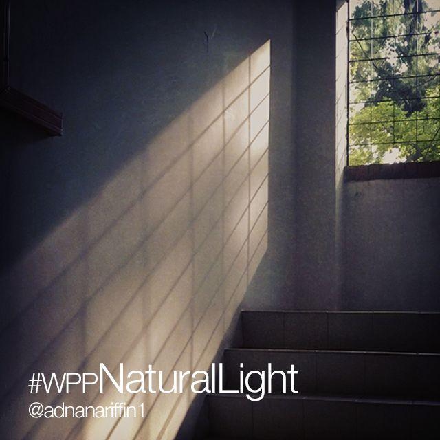 natural light photo contest