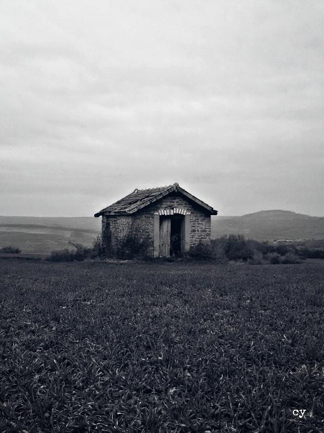 #travel #burgundy #nature #blackandwhite