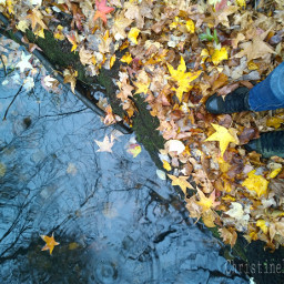 wppfallcolors fall nature autumn photography