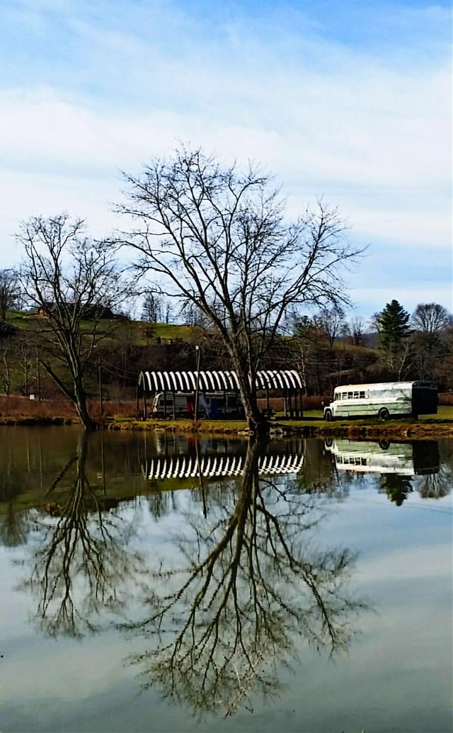 #photography #nature #reflection