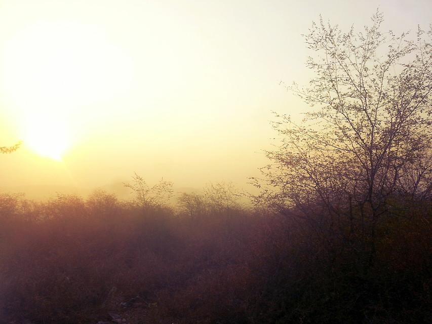 #nature  #beauty #mario