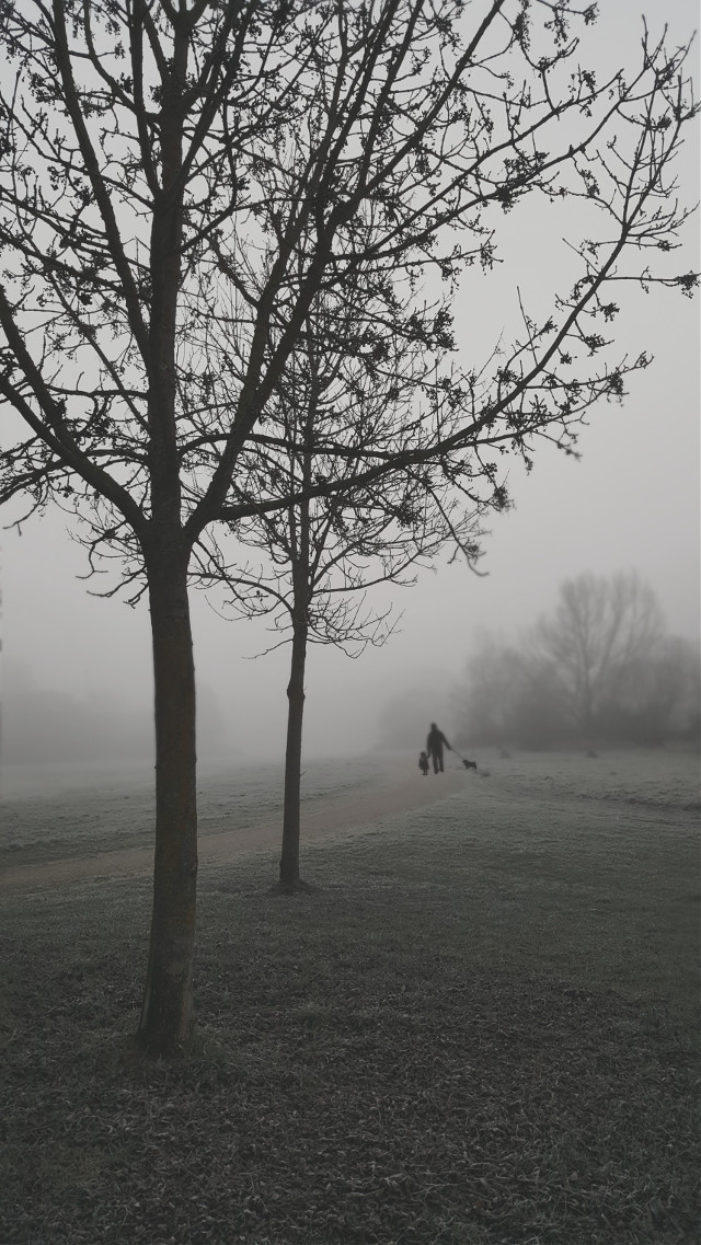 #fog #moon #morning #cold #winter #baby #blackandwhite #emotions #nature #people #photography #travel #vintage #peoplephotography #december #cold #winter