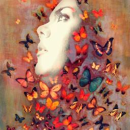 artisticselfie butterflies