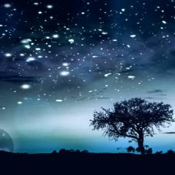 temperatureadjust tree landscape dreamscape winter