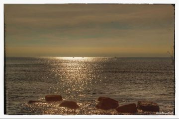 photography sea silence