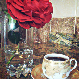 flower coffee morning colorful