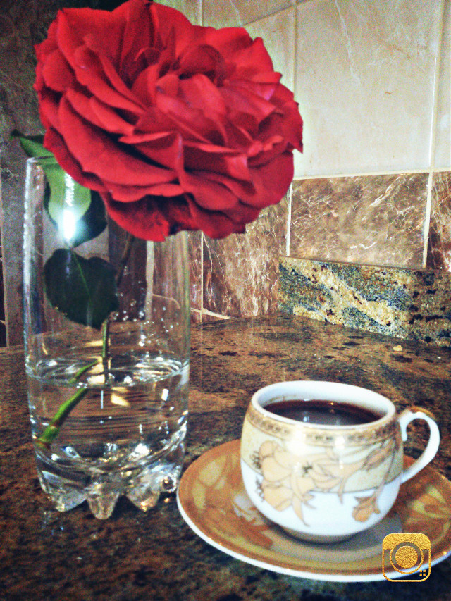 #flower  #coffee #morning  #colorful 🌷☕