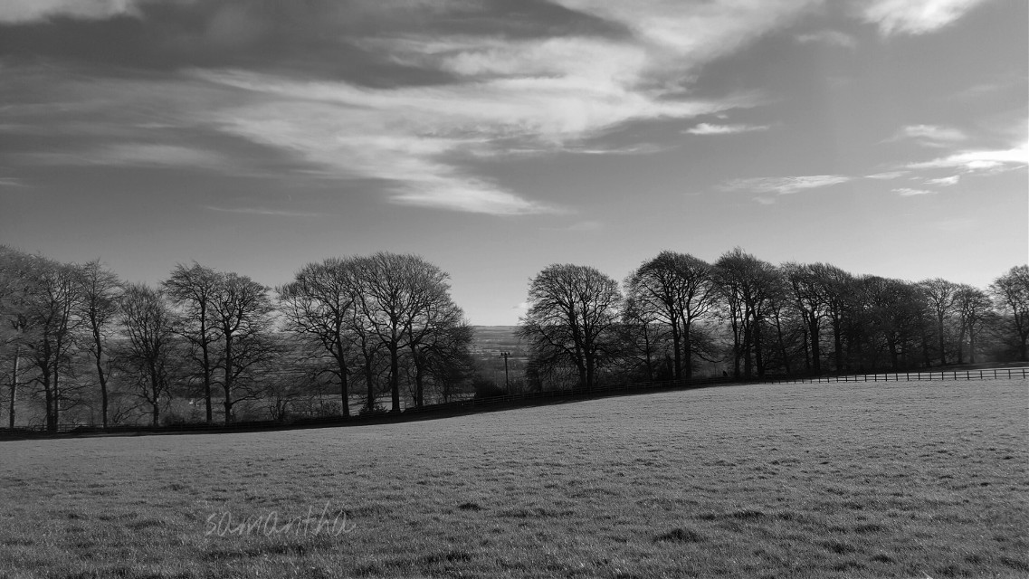 #blackandwhite #nature #photography #countryside #walk