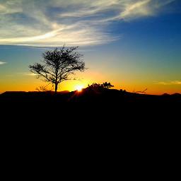 winter sunset tree clouds blue_sky
