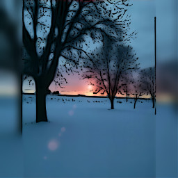 nature sunset silhouttes winter wisconsin