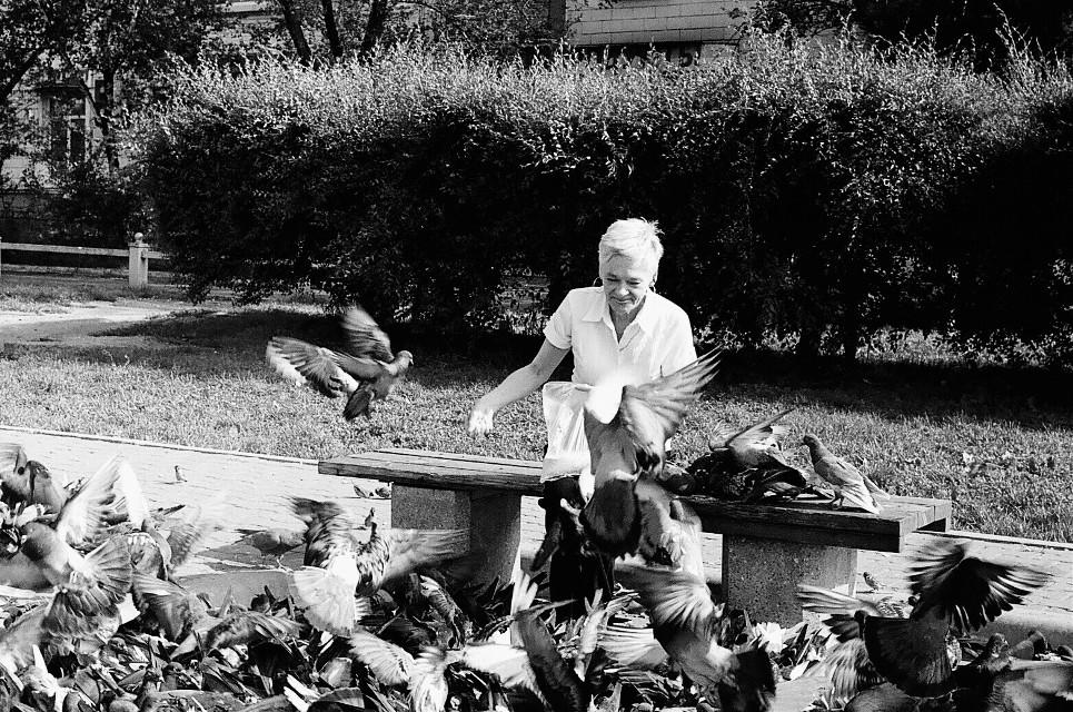 #35mm #film #zenit #oldcamera #bnw #blackandwhite #black&white #doves #pigeons #smile