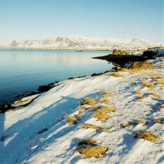 iceland reykjavik travellingislove wounderfulday winter