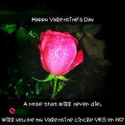 valentine bemine loveneverdie iloveyou