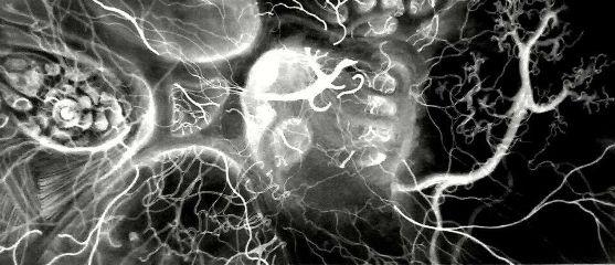 drawing art neurons blackandwhite emotion