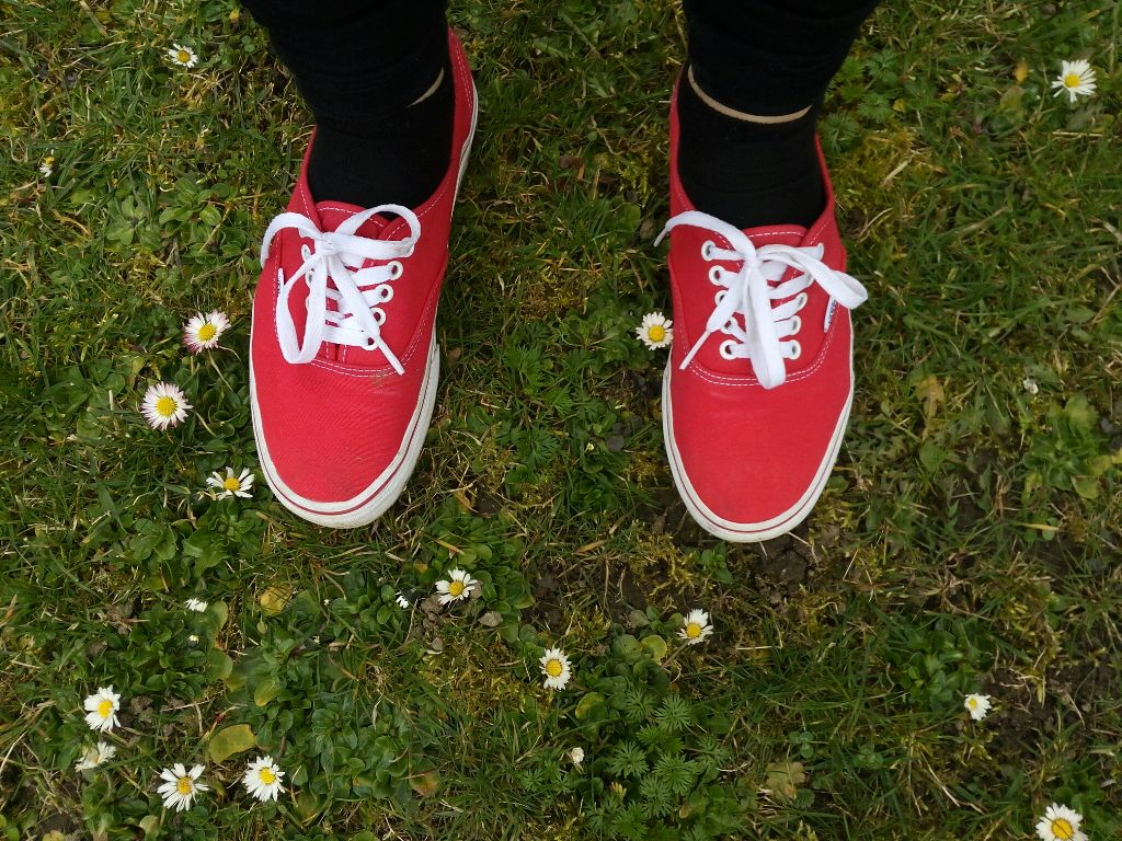 #sneakers #flower #nature #photography #spring #vans #red #grass