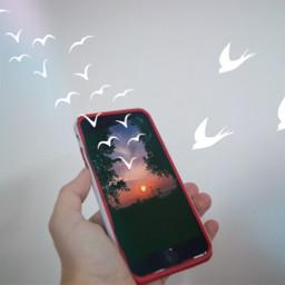 illusions birds clipart lightmasks sunset
