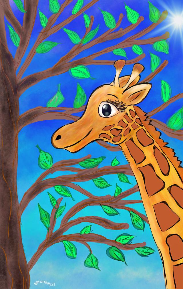 My Young Giraffe Thank you for your Votes! #dcwildlife #DCjungles #giraffe #drawing #art #petsandanimals