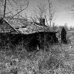 house abandoned decay naturewins blackandwhite
