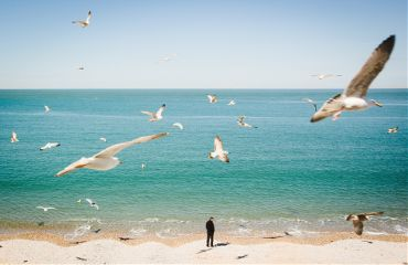 earthday earth beach france normandie