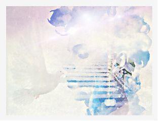 drawtools artisticportrait doubleexposure photoblending oil