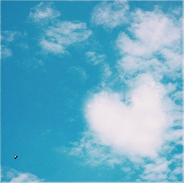 #colorful  #love #photography #nature #retro #spring #summer #film #sky #blue #cloud #memories #photograph #sunny #FreeToEdit