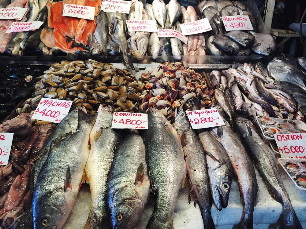 Fish market in Santiago, Chile - Knowmad Adventures on PicsArt