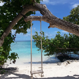 beach nature malediven wppvacation travel